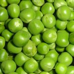 Picture of Winter Garden Peas