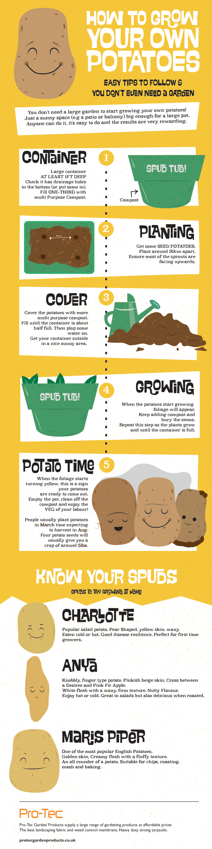 Infographic of How To Grow Your Own Potatoes