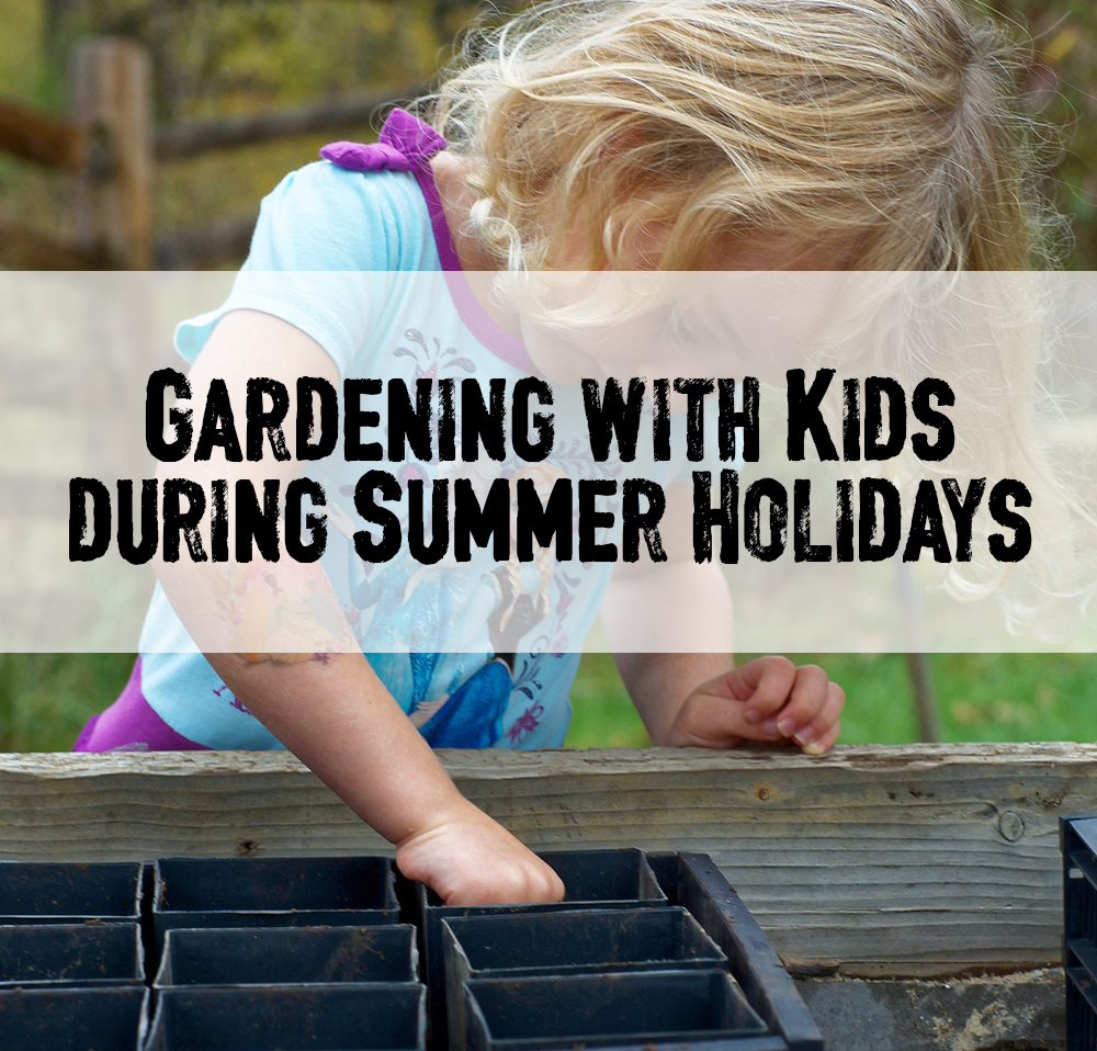Gardening with Kids during Summer Hols