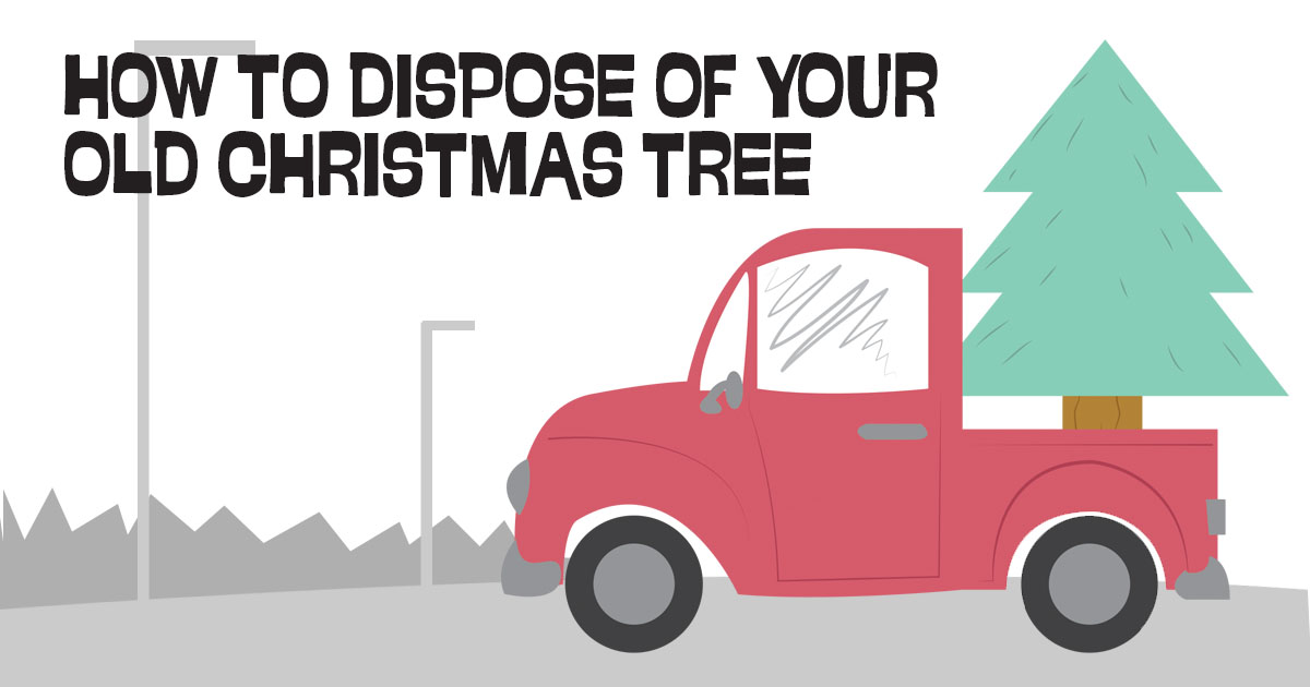 How to Dispose of Your Old Christmas Tree