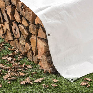 Picture of Firewood and Tarp